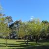 Monserrat Campground