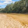 Rivers Run Colo River Camping