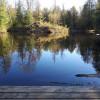 Cedar Creek Forest Camping