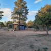 Mo Pines Ranch