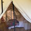 White Oak Tent #4