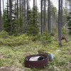 Wooded Camping 7miles to GNP