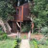 13th St Tree House