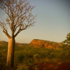 Ord Valley Delight