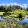 Cascadilla Meadow Camping
