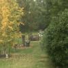 Farm Yard Camping at RedRock farm