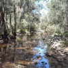Millstream Wildlife Haven