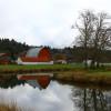 Tent camping at Taylor Farm