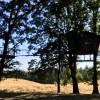 Blackberry Hills Farm Tent Camping