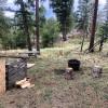 Conifer Retreat