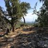 Cedar Crest Retreat with Views!