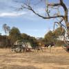 Dufholme Camping