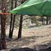 Quigley Tree Tent