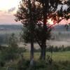 Willow Pond Paradise - 185 acres