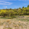 Snake river horse ranch camping