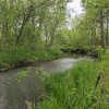 Horseshoe Bend - Creekside Site
