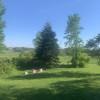 Fields and Woods in Glen Robertson