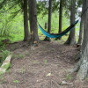Relaxing Camp Sites in The Woods
