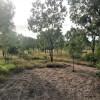 Little Glenora Bush Camp - Cawarral