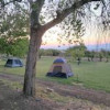 Orchard Sunset Tent Camping
