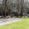 Shady Gems creekside