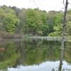 Cokertown Campground- lakeside camp