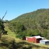 Rustic Bush Hut