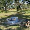 Site 1 Burdekin Plum Tree
