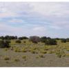 5 Acres of Arizona Desert Beauty
