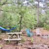 Bay Forest Primitive Retreat