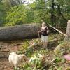 Carole's Lost Acres Farm