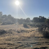 Manzanita Trails