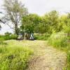 Indigo Meadows