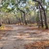 Rules Beach nudist bush sites