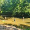 Marshalls Landing on the River