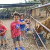 Timber Ridge Critter Camp