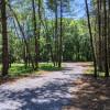Quiet, Wooded Boondocking Site
