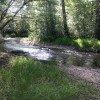 Good Old Camping by the Creek
