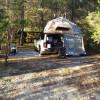 Barn Owl Forest Camp