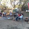 Thornbill Camp
