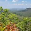 Mount Fantastic Nature Camp