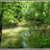 Mountain Hollow Oasis Oneida TN RV