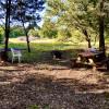 Shady Oaks at Bluff Creek Preserve
