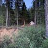 Sugar Pine Camp: Site #3