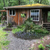 Quaint Cabin/Olympic Rainforest