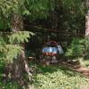 Mountain rainforest campsite # 1
