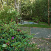 Mountain rainforest campsite #6