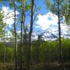 The Raven's Den: Valdez, Alaska