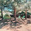 Mountain Brook Meadow Campsite