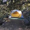 """OakTree"" Campsite at Spirit Walk"